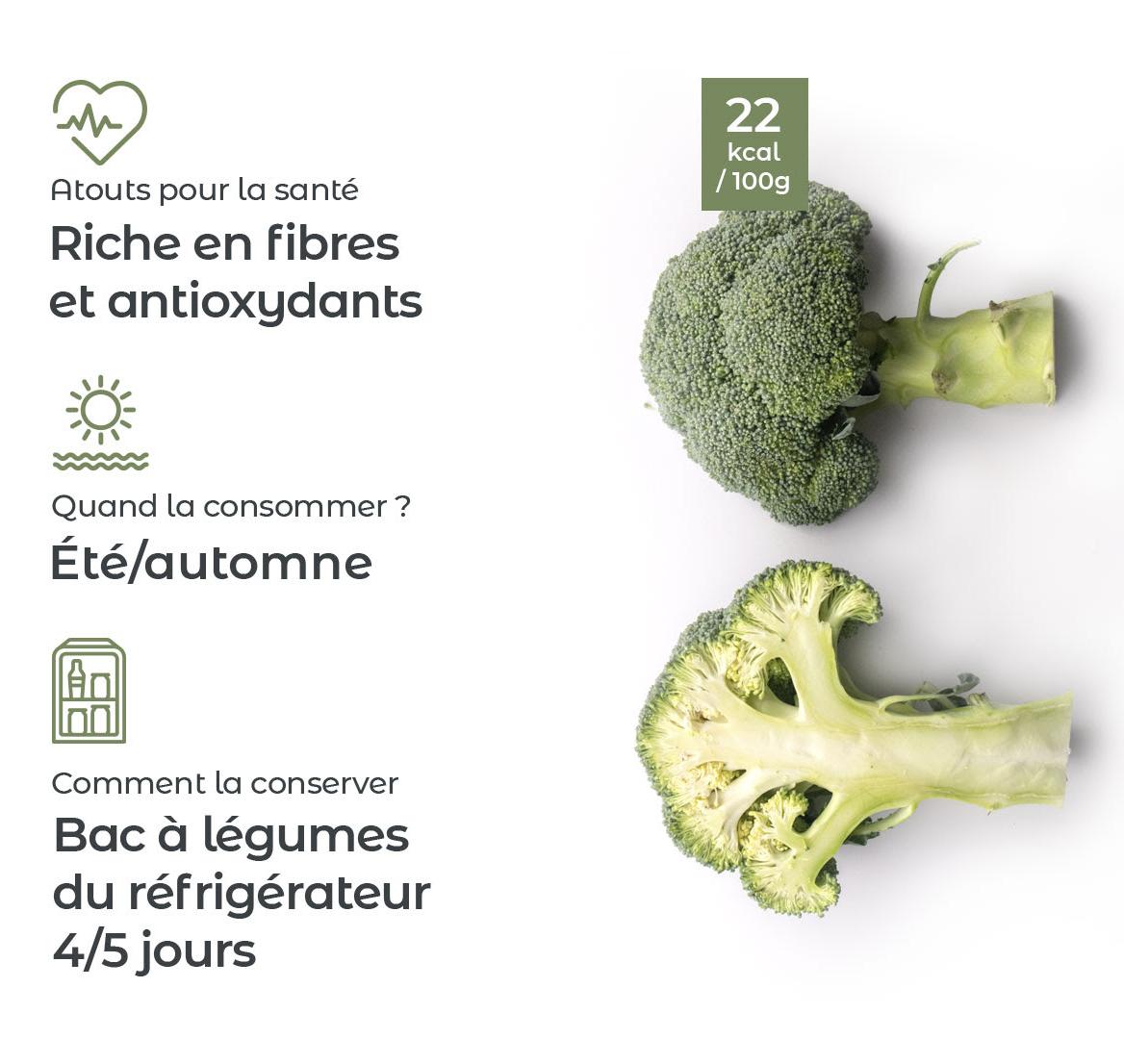 Le brocoli : atouts, conservation, saison